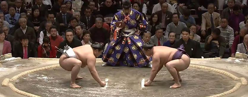 Сумо - Hatsu Basho 2017
